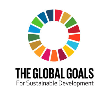 Slide 7 – UN's global goals